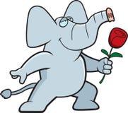 Elephant Flower Royalty Free Stock Image