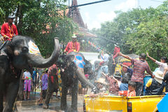 Elephant fun in water festival . AYUTTAYA, THAILAND - APRIL 14: Songkran Festival is celebrated in a traditional New Year's Day from April 13 to 15, with the Royalty Free Stock Photos