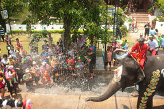 Elephant fun in water festival . Stock Photos
