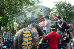 Elephant fun in water festival . AYUTTAYA, THAILAND - APRIL 14: Songkran Festival is celebrated in a traditional New Year's Day from April 13 to 15, with the Stock Photography