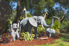Elephant Garden Grazing Stock Photos