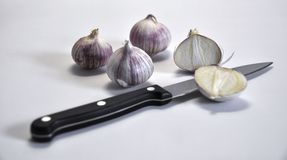 Elephant Garlic on white Stock Image