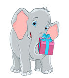 Elephant with a gift Royalty Free Stock Photo