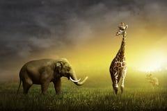Elephant, Giraffe, and Deer on the grassland Stock Photo