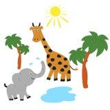 Elephant and giraffe on the Savannah. Elephant and giraffe sunbathing in the Savannah Stock Photography