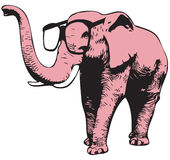 Elephant With Glasses Stock Images