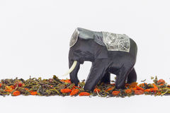 Elephant goes over tea and wolfberries Royalty Free Stock Image