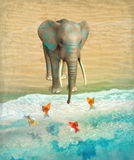 Elephant and goldfish on the beach. Royalty Free Stock Photography