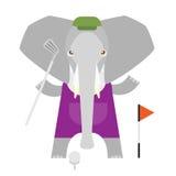 Elephant golf Royalty Free Stock Image