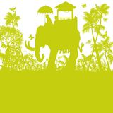 Elephant in the green jungle. Elephant in the green wild jungle Royalty Free Stock Images