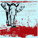 Elephant Grunge Background Royalty Free Stock Photos