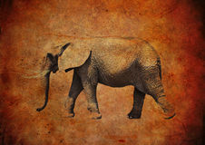 Elephant on a grungy vintage background Stock Image