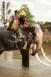 Elephant hapiness with water after Ordination parade on elephant Royalty Free Stock Photography