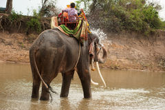 Elephant hapiness with water after Ordination parade on elephant Royalty Free Stock Image