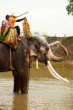 Elephant happiness with water after Ordination parade on elephant Royalty Free Stock Image