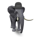 Elephant in a hat Stock Image