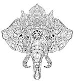 Elephant head doodle on white vector sketch. Stock Image