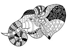 Elephant head doodle on white vector sketch. Elephant head doodle on white background.Graphic illustration vector zentangle ready for coloring book Royalty Free Stock Images