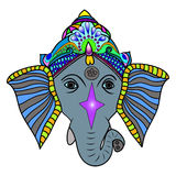 elephant head. Hand drawn, front view,  elephant head,   colored  vector illustration Royalty Free Stock Photo
