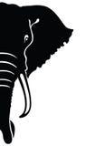 Elephant head. Illustration. Elephant head. Silhouette on a white background. Vector illustration vector illustration