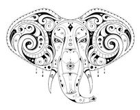Elephant head illustration Stock Image