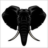 Elephant head. Isolated on white. Royalty Free Stock Images