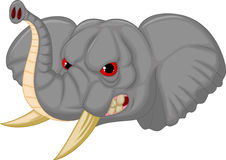 Elephant head mascot cartoon character Royalty Free Stock Photo