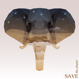Elephant head with night Savannah view. concept illustration on the theme of protection of nature and animals. Concept illustration on the theme of protection of vector illustration
