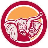 Elephant Head Tusk Circle Retro Stock Image