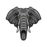 Elephant head, tusks and trunk vector mascot icon Royalty Free Stock Images