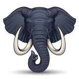 Elephant head vector illustration