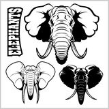 Elephant heads - vector set. Black and white - Isolated on white. Stock Image