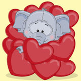Elephant in hearts Royalty Free Stock Photo