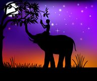Elephant and boy. Elephant helps the boy get fruit from tree vector illustration Stock Image