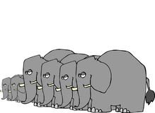 Elephant Herd stock illustration
