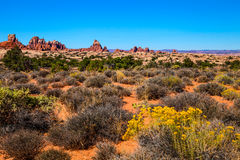 Elephant Hill Road Needles District of the Canyonlands National Park in Utah. Stock Image