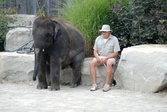 Elephant and his master Stock Photo