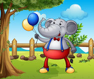 An elephant holding balloons Stock Image