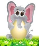 Elephant holding egg cartoon Royalty Free Stock Photography