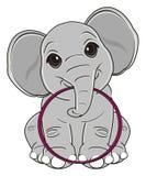 Elephant and hoop Stock Photo