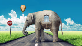 Elephant-house on the road. Elephant as a house on the road. concept (photo and hand-drawing elements combined vector illustration