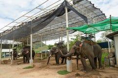 Elephant with howdah at elephants camp,Thailand Royalty Free Stock Photos