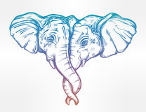 Elephant huggung or kissing another with trunk. Stock Photography