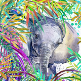 Elephant illustration. Tropical exotic forest, green leaves, wildlife, elephant, watercolor illustration. Royalty Free Stock Photos