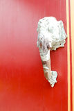 The elephant  the ivory no  head a door Royalty Free Stock Images