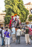 Elephant in Jaipur Fort Stock Photography