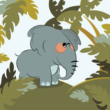 Elephant in the jungle. Vector Royalty Free Stock Images
