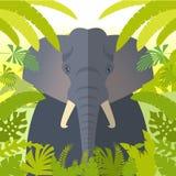 Elephant on the Jungle Background. FlatVector image of the Elephant on the Jungle Background Stock Images