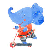 Elephant on kick scooter. Elephant on a kick scooter, watercolor illustration on white background stock illustration
