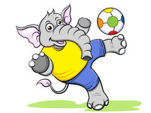 Elephant kicking football Stock Photos